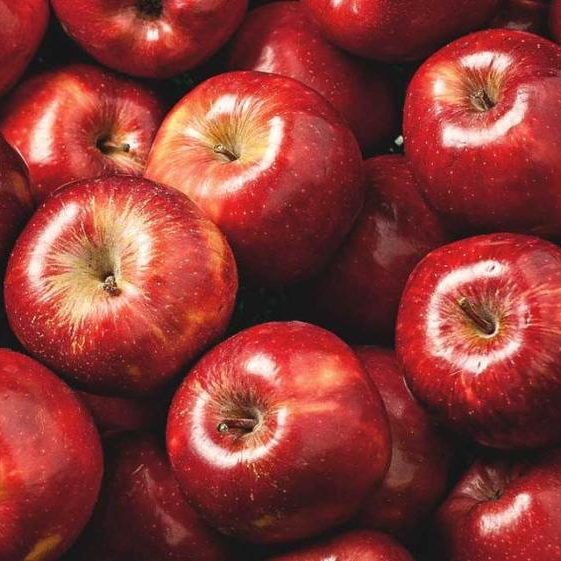 fresh apple fruits - Produce Mart